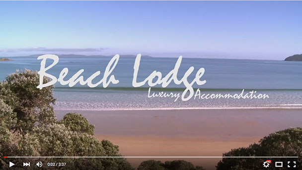 video of Beach Lodge Coopers Beach accommodation