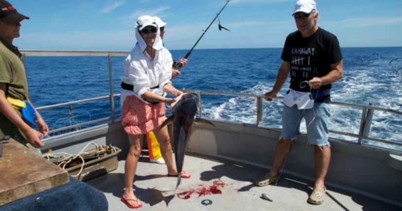 may marie fishing charters
